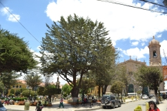 Potosi Square